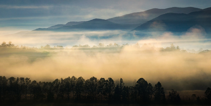 Fog rising over a forest with a mountain range in the background.
