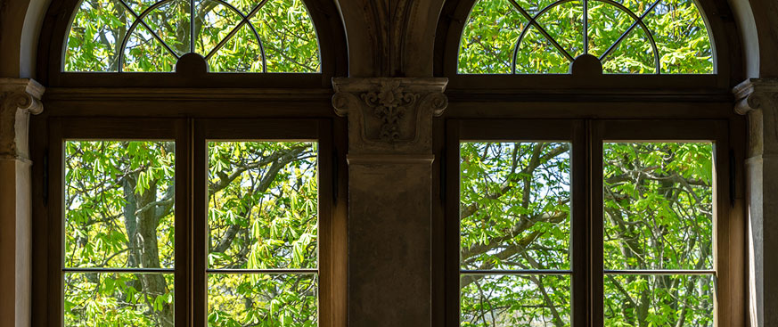 Multi Factor Bond hero image featuring two parallel windows with green leaved trees outside them