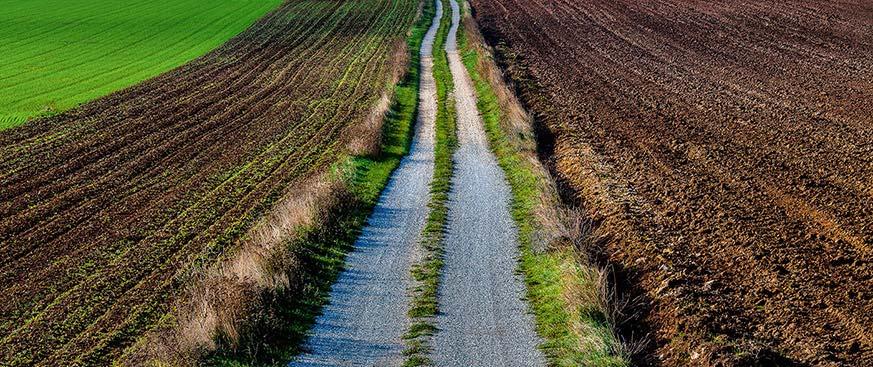 Gravel road through a field